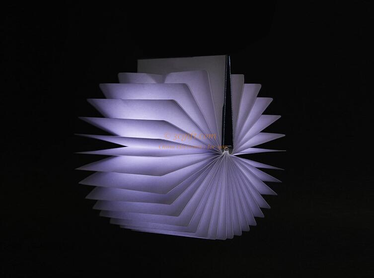 books Nightlight LED Rechargeable Book Light 20970
